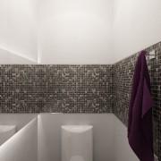 2013-12-bathroom 2