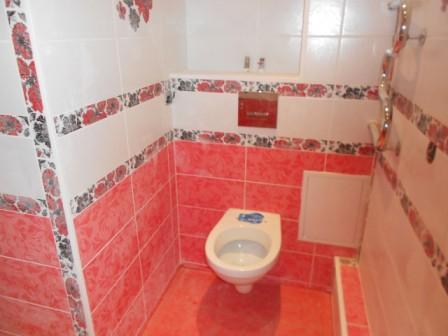 osobennosti-otdelki-tualeta-plitkoj (14)